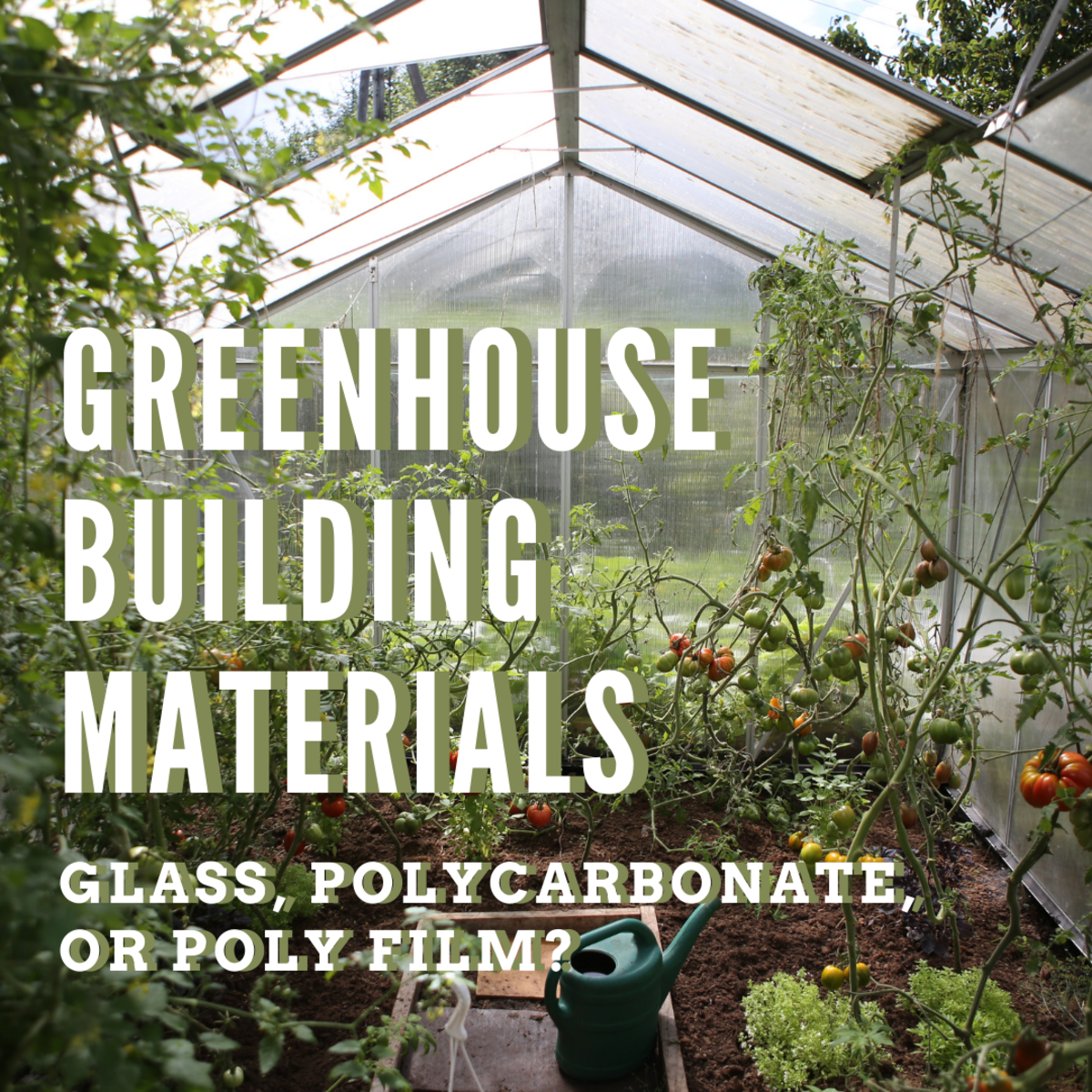 Which materials should you use to build your greenhouse?