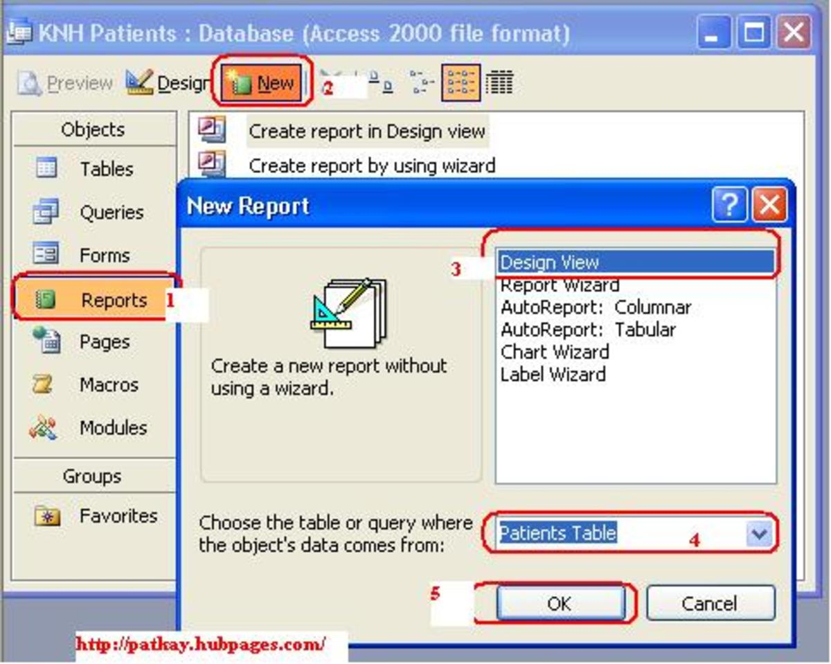 How to Create Reports Using Microsoft Office Access 2003