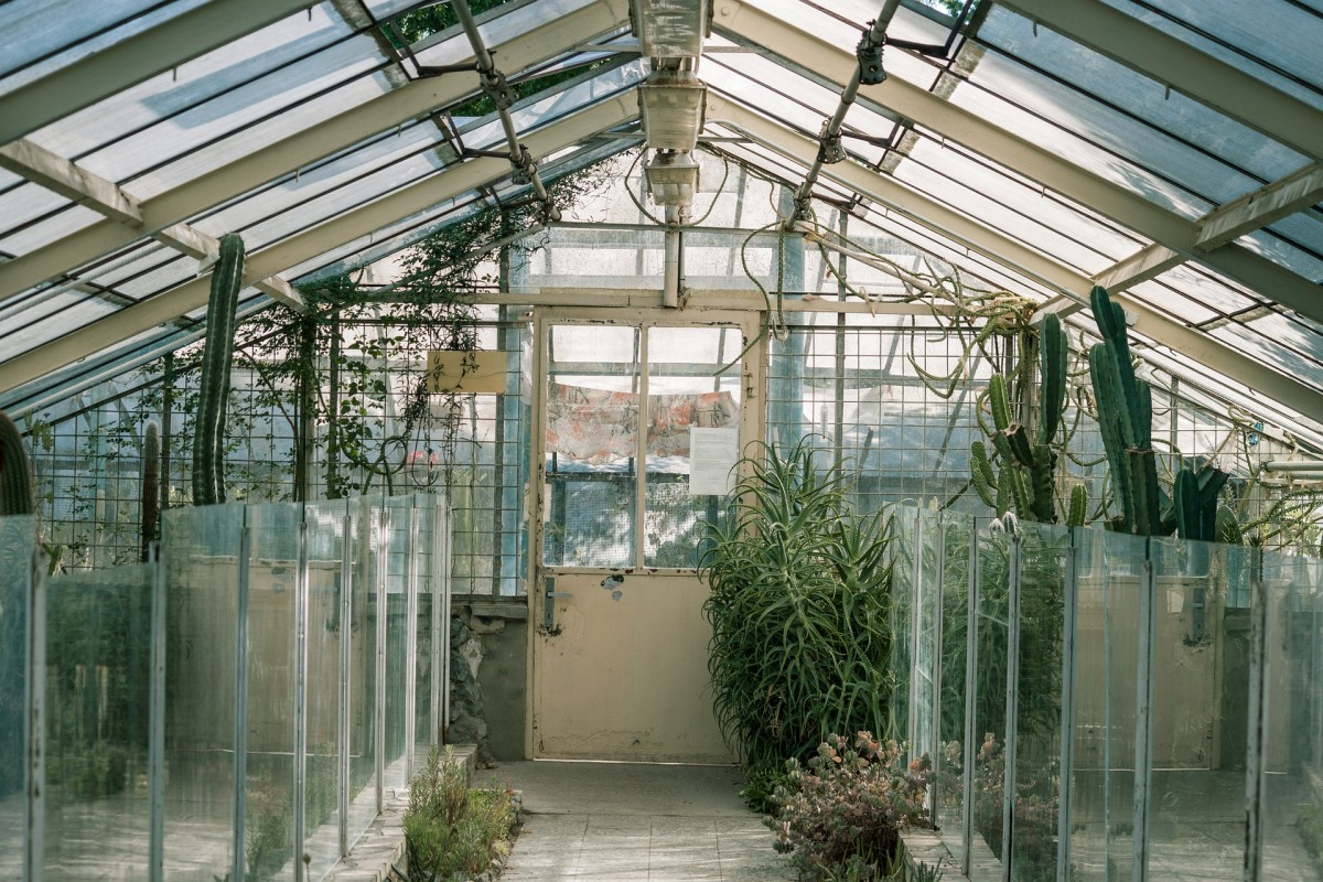 Glass Greenhouse Roof