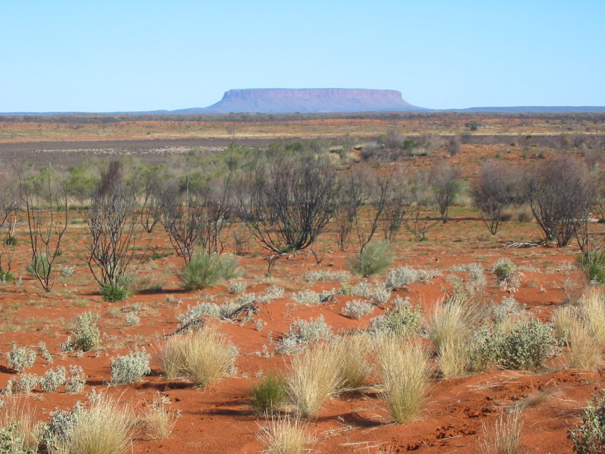 While the Outback looks stunning, its not exactly what comes to mind when you think about farming.