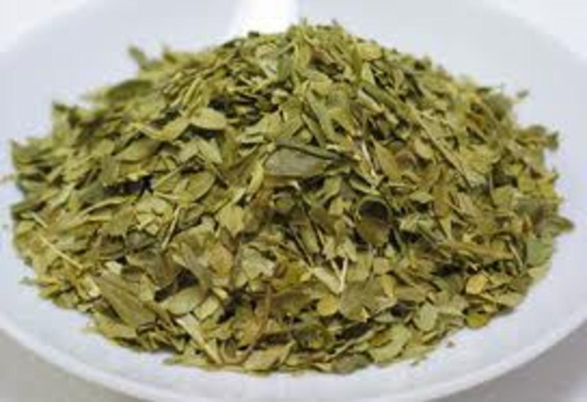 Buchu Herb helps treat Urination Problem Herbally