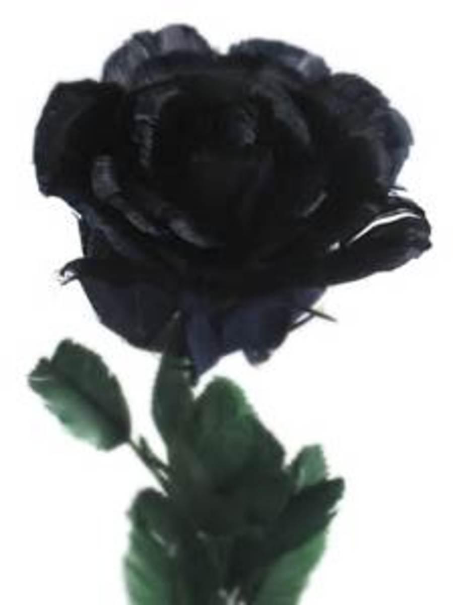ebony-flowers
