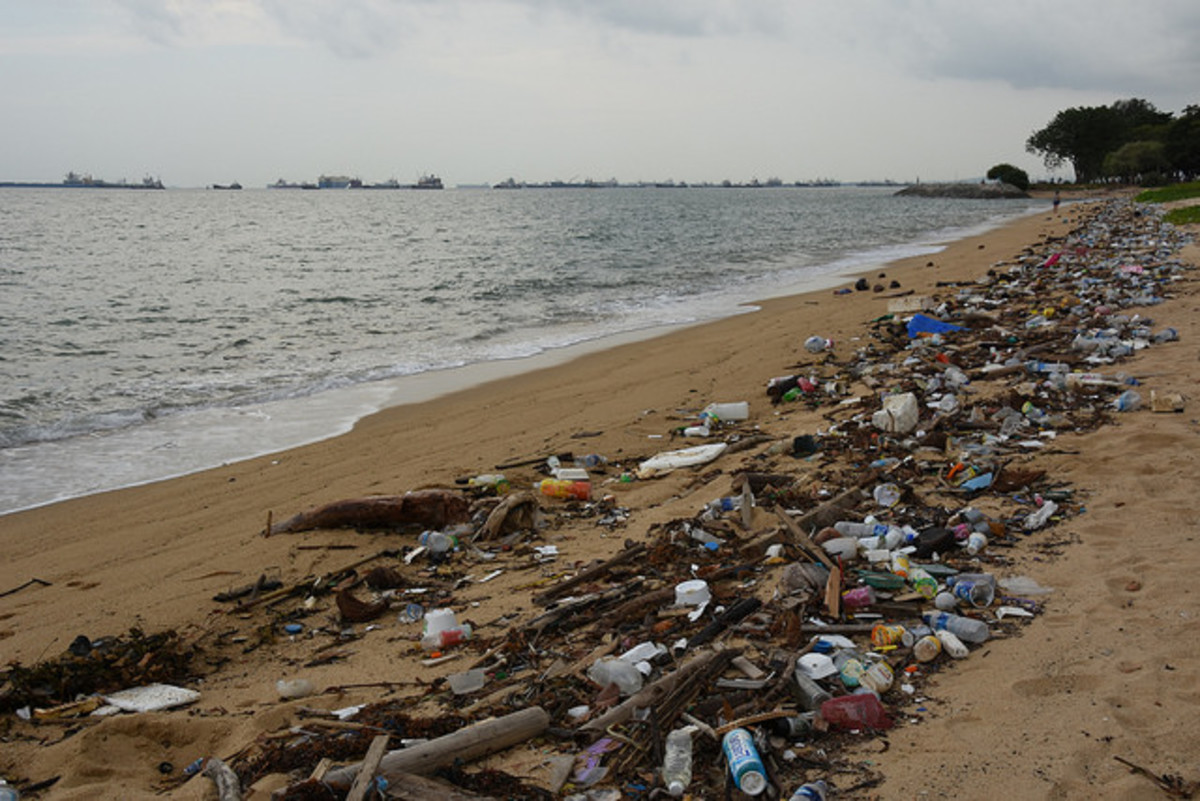 How I Can Help Reduce Plastic Waste
