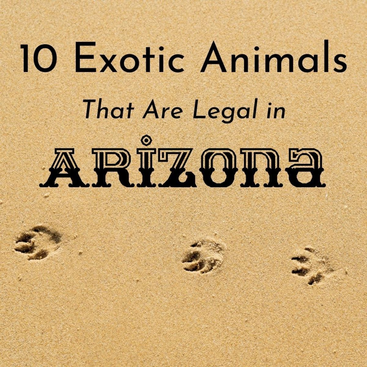If you hate extreme heat or like keeping exotic pets, don't move to Arizona.