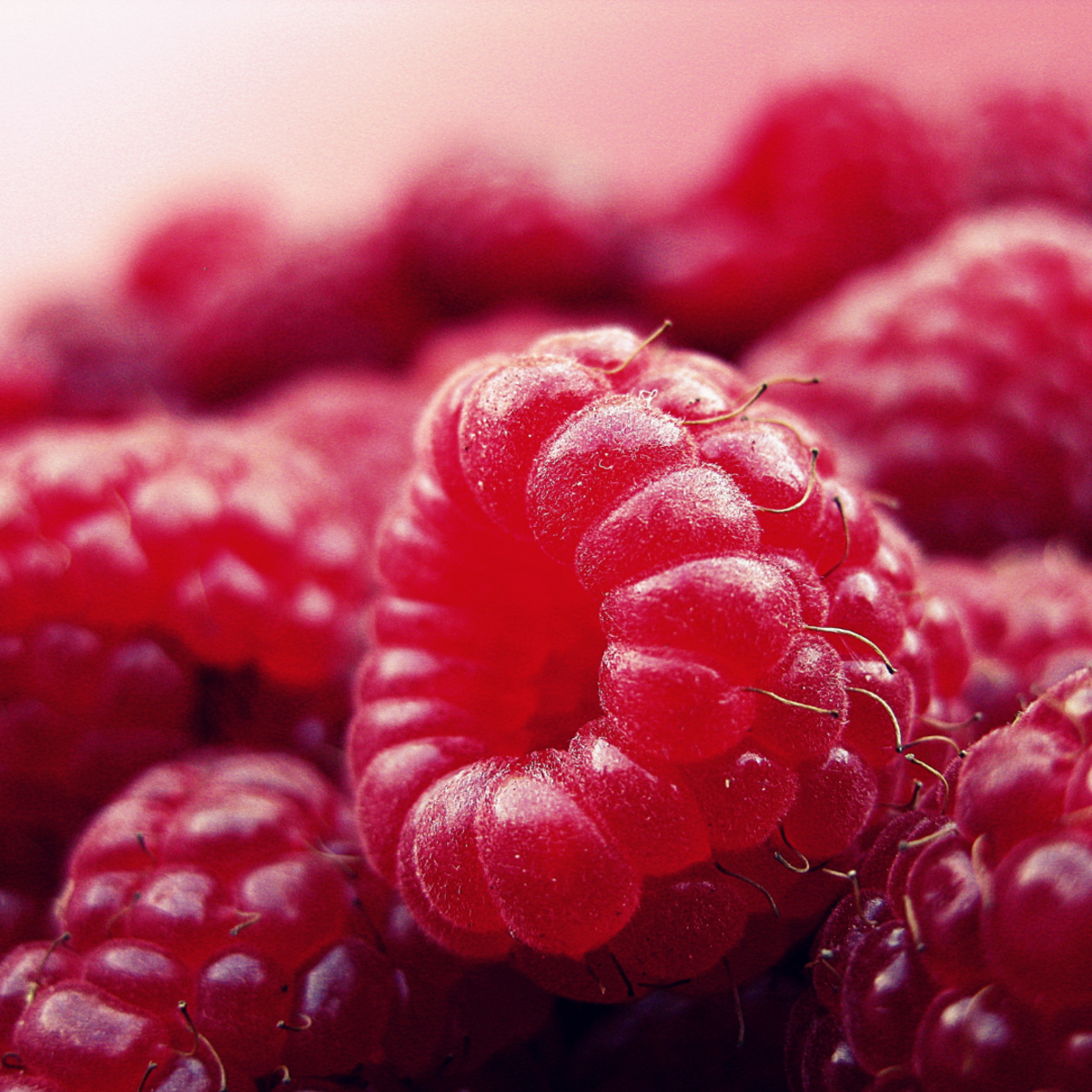 My Dear Raspberry...