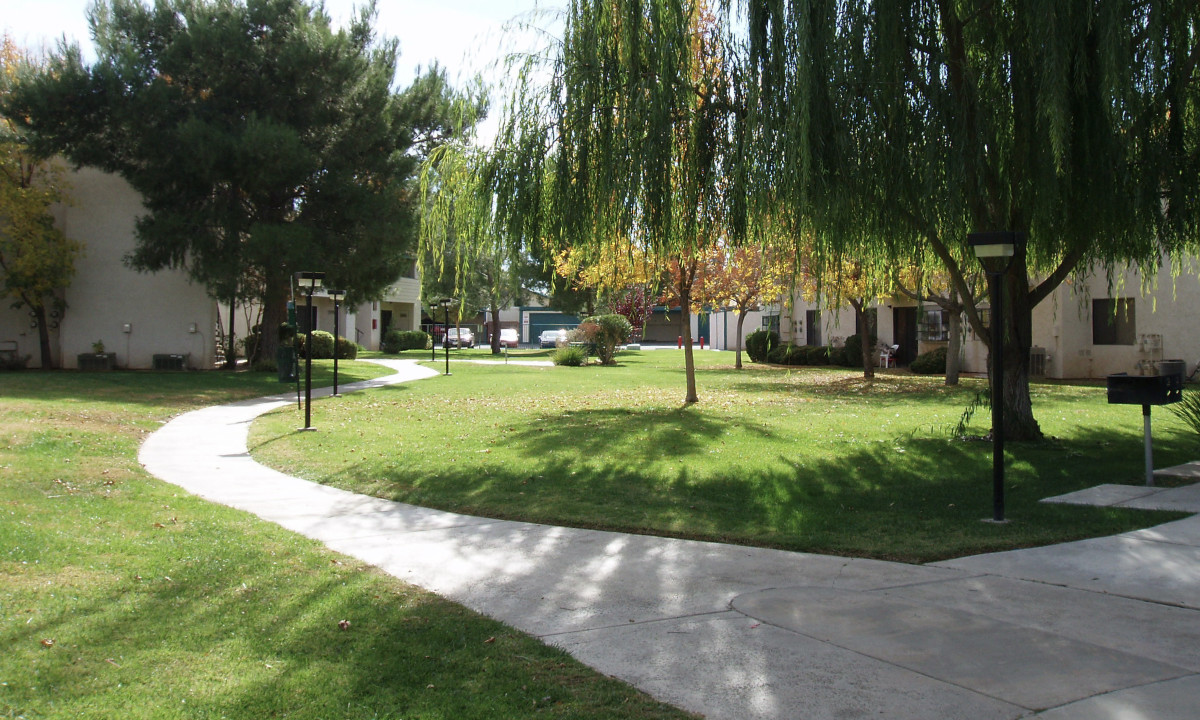 Extensive lawns don't belong in a desert, especially when irrigation systems are not well maintained. Where the pipes leaked under the big shade tree on the left, mushrooms sprouted regularly.