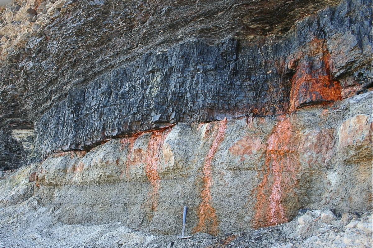 A bituminous coal seam in Canada; photo by Michael C. Rygel via Wikimedia Commons
