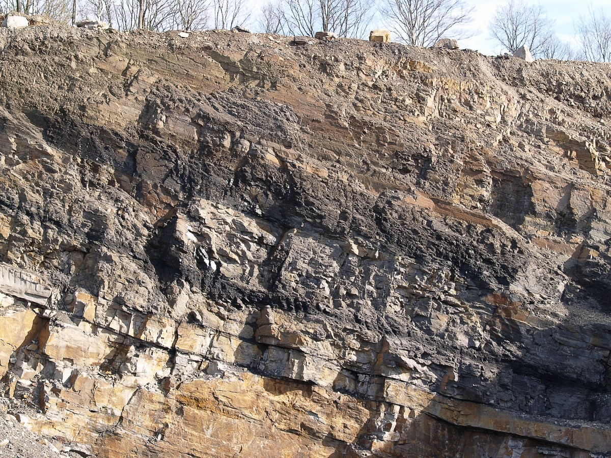 Coal seams (the darkest layers) in Germany