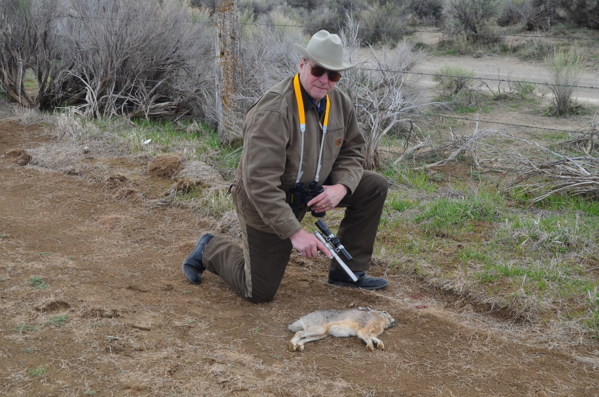 Jackrabbit taken with a Ruger .22 autoloader.