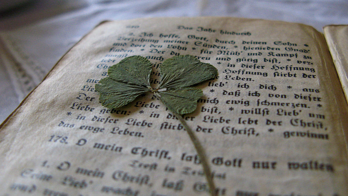 In the Middle Ages it was believed a person carrying a four-leaf clover had the ability to see fairies.