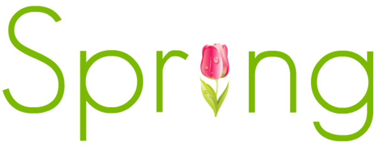 Green Spring with pink tulip