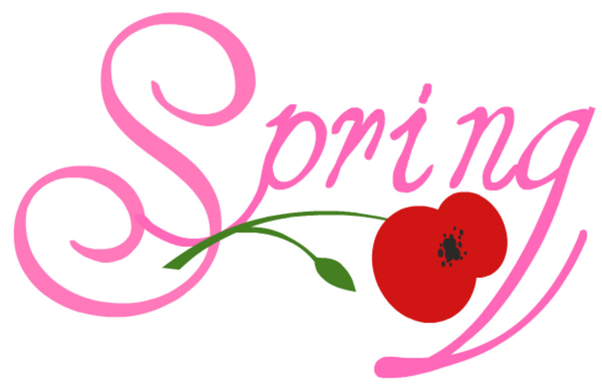 Pink Spring with red poppy