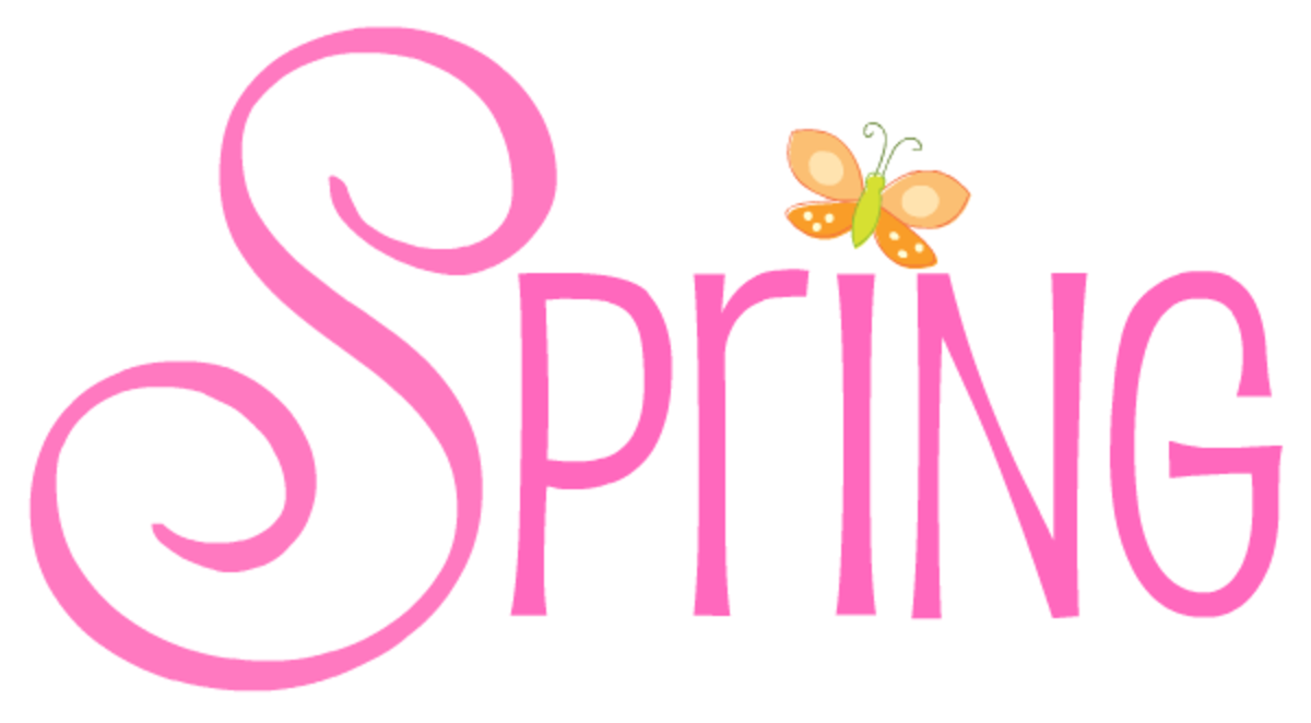 Pink Spring with orange butterfly