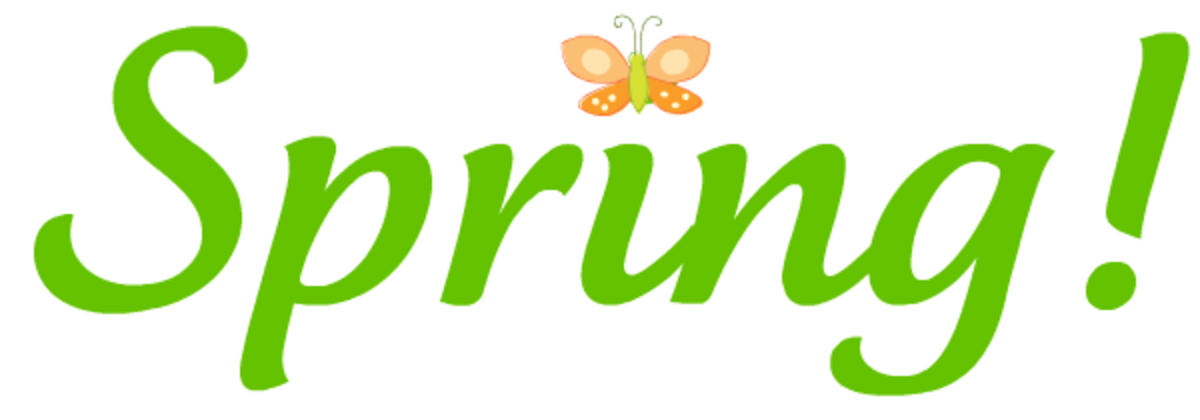 Green Spring with orange butterfly