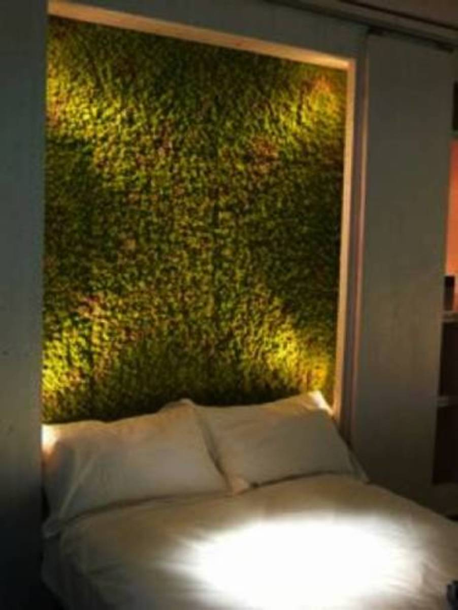 The headboard was made from the artificial plants.