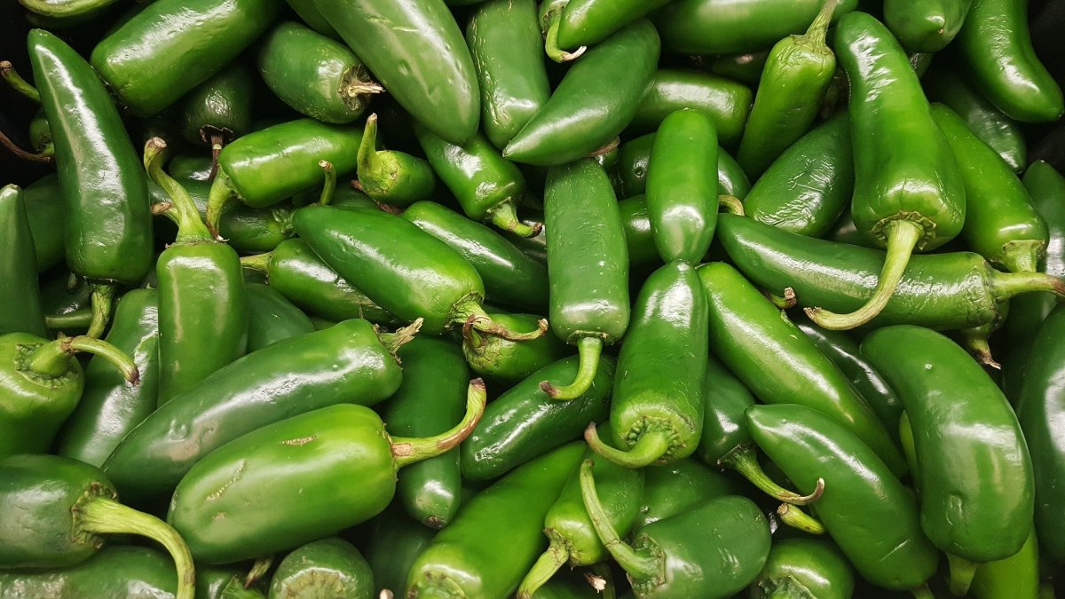 mirchi-ka-salan-green-chillies-curry