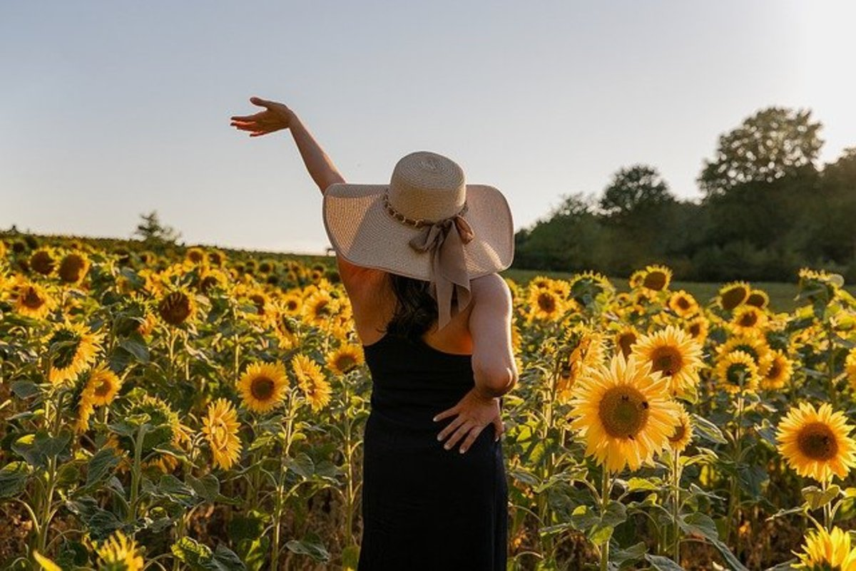 Sunflower is used in magick to boost happiness.
