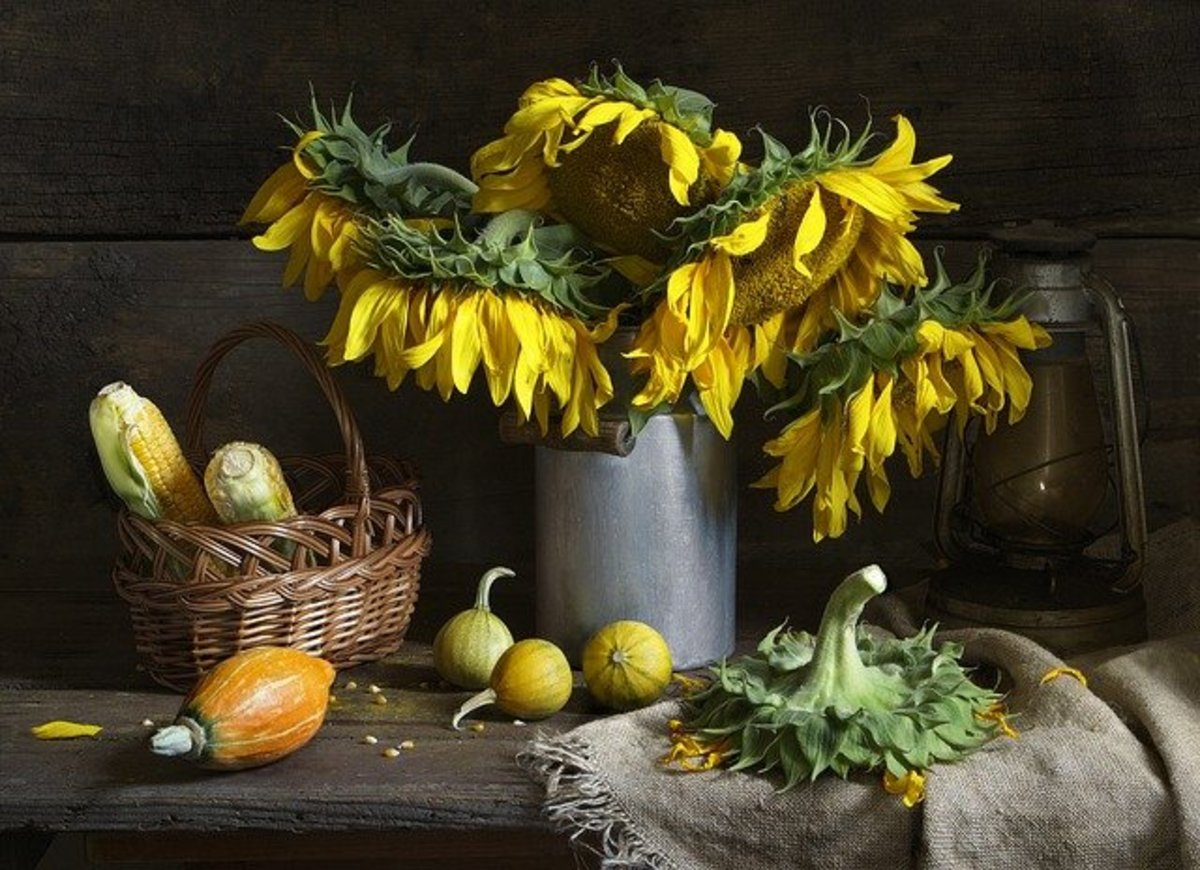 Sunflowers are strong flowers that can last a couple weeks as a cut flower.