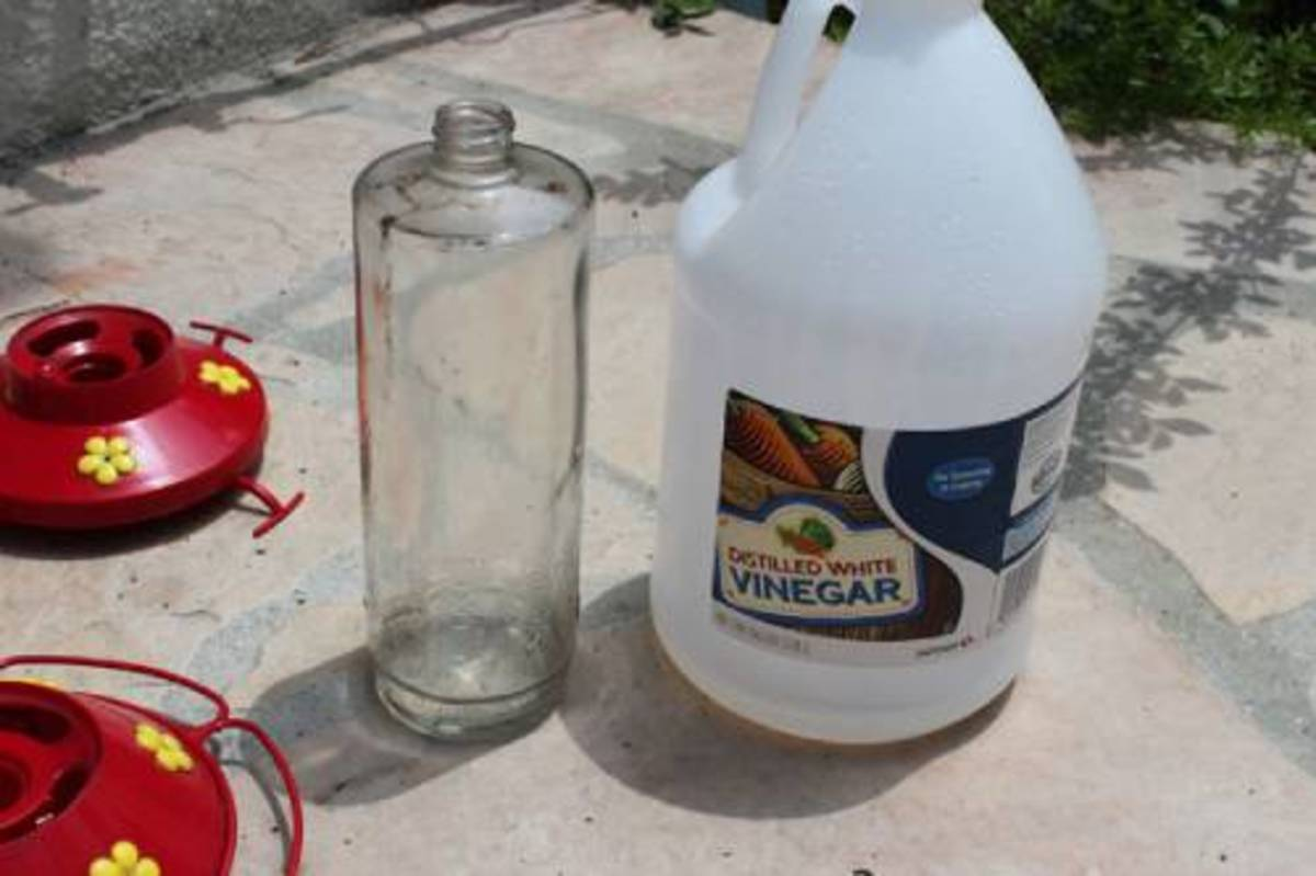 Step 1 Step 2 Step 3 Cleaning a Hummingbird feeder with vinegar and clean the distilled water.