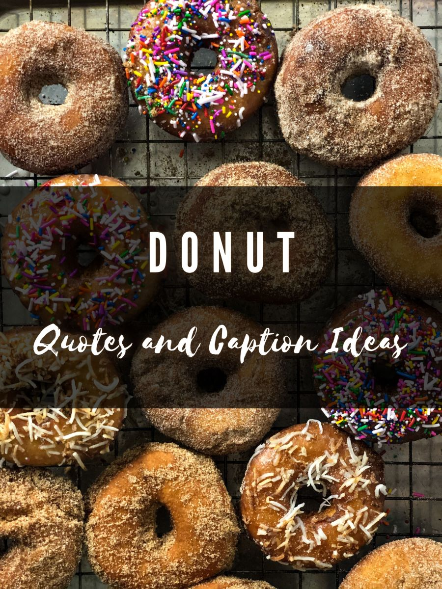 Donut Quotes and Caption Ideas