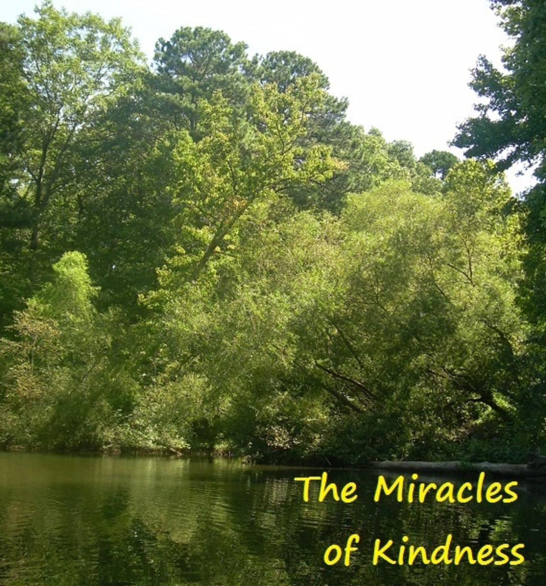 The Miracles of Kindness