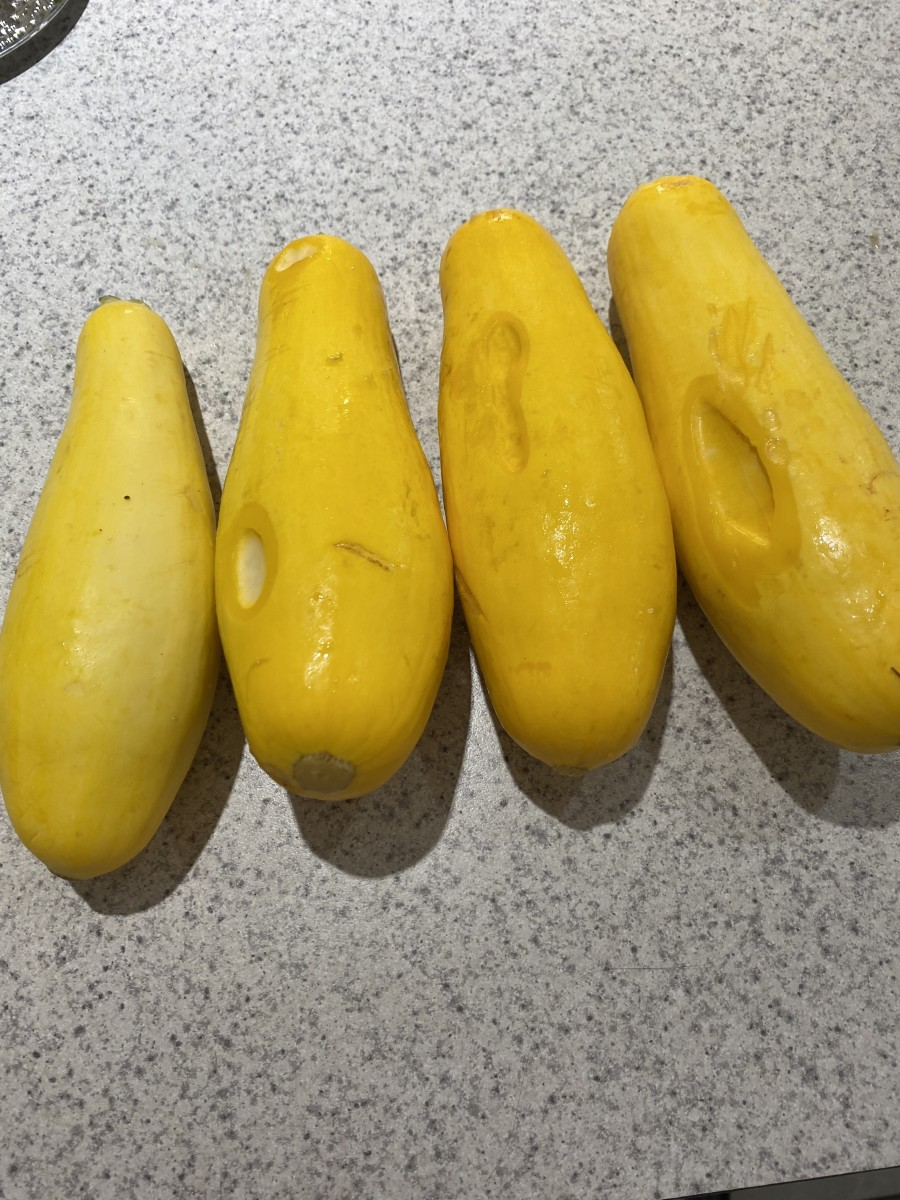 The yellow squash was soft and half rotten