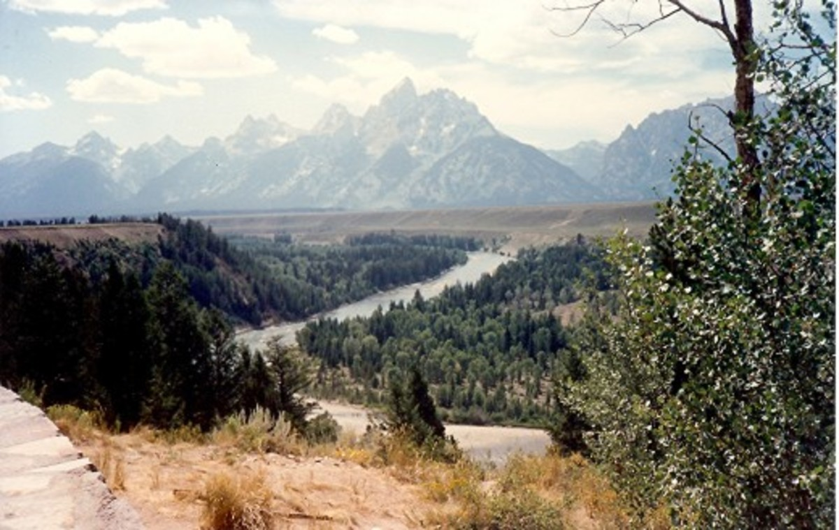 Ox-Bow Bend Turnout of the Snake River in the Grand Tetons