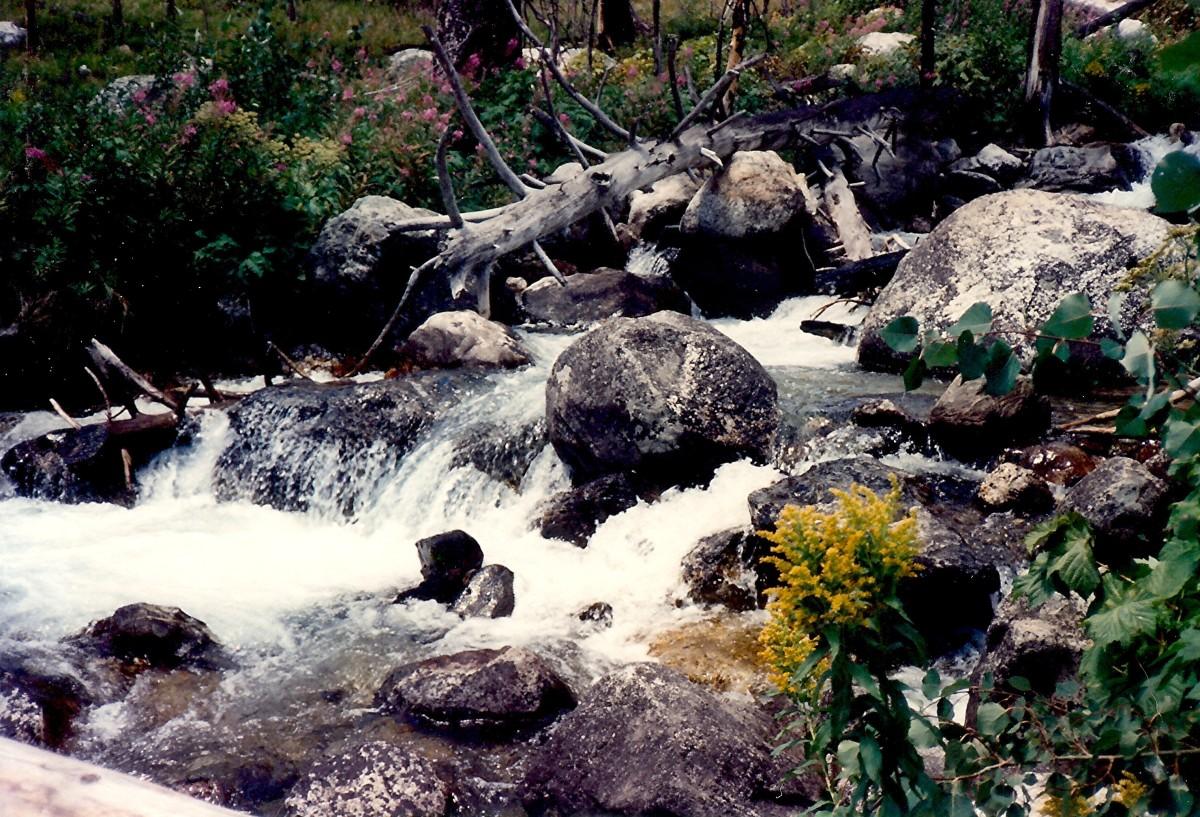 Taggart Lake Trailhead