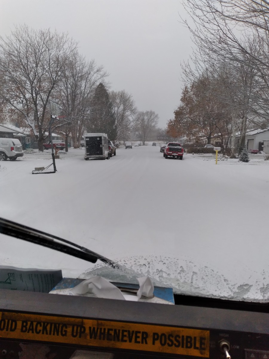 First Colorado snowscape for a Palm-Tree postman.