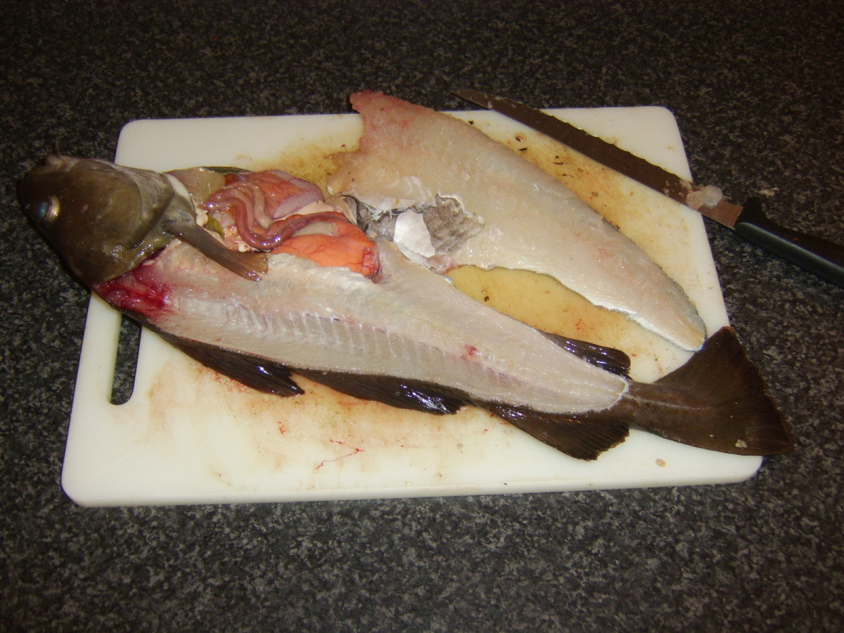 First codling fillet removed