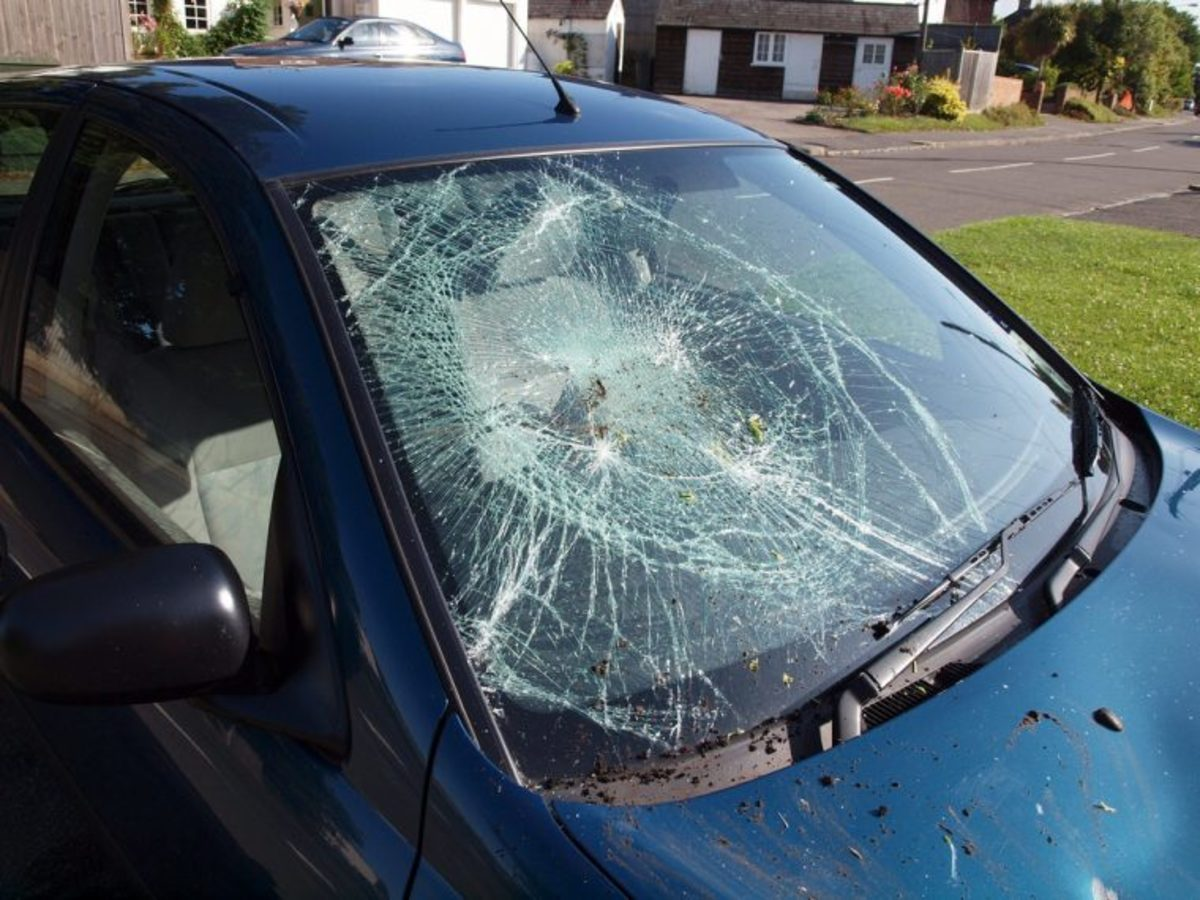 the glass shards are held together by the laminated glass used to make windshields