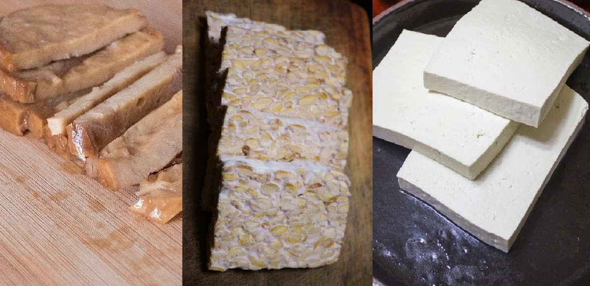 What's the Difference Between Seitan, Tempeh, and Tofu?