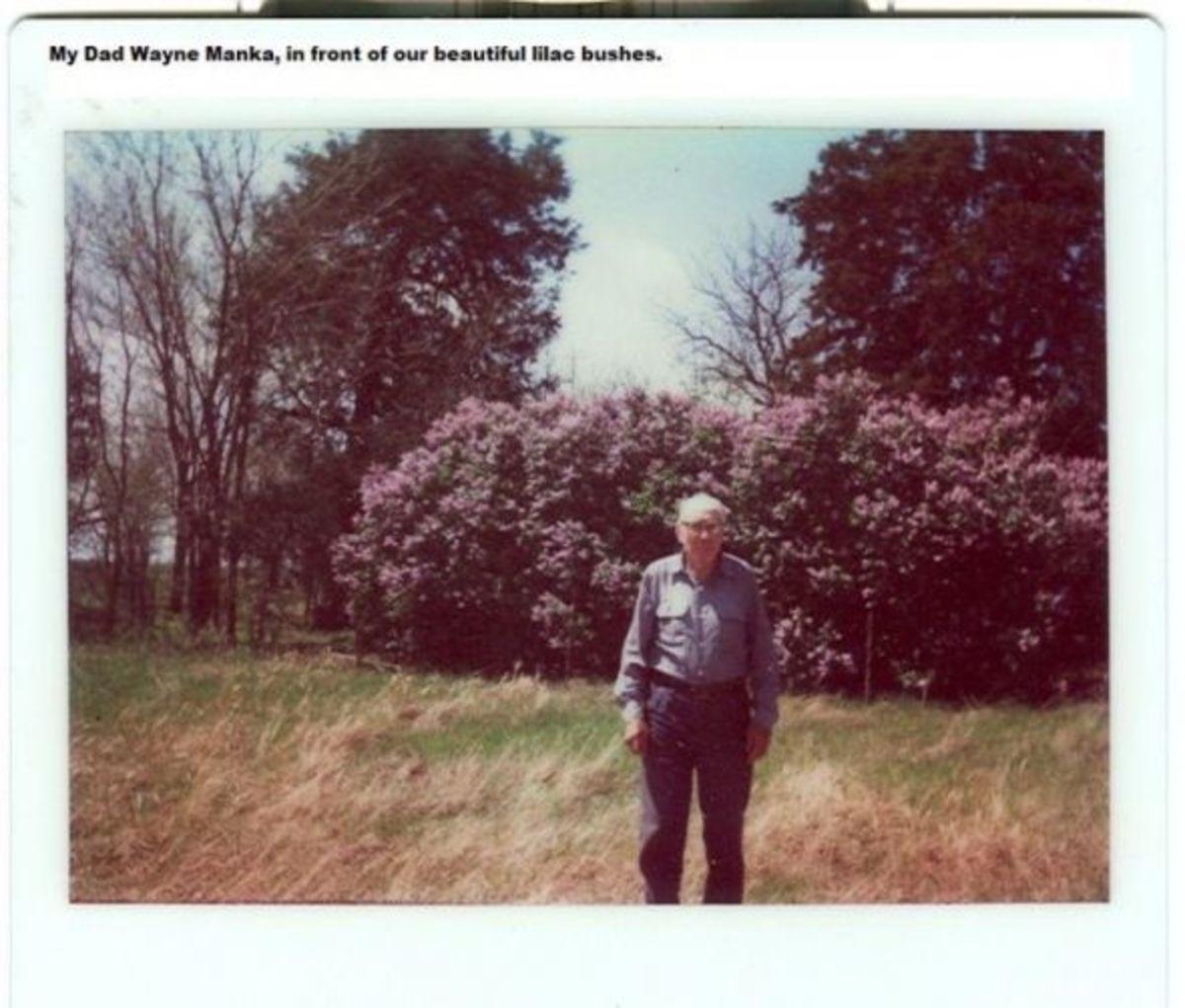 Wayne Manka (note the lush lilac bushes)