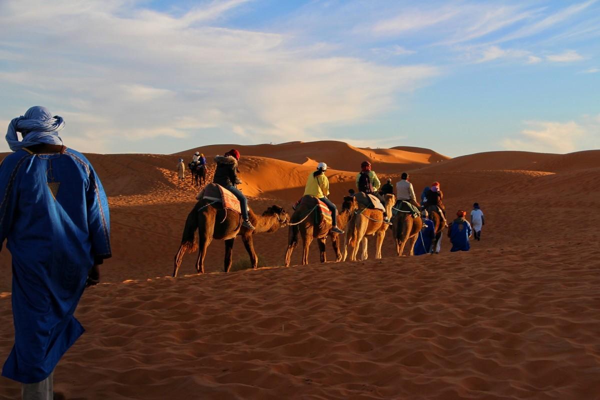 Caravan in the golden sands