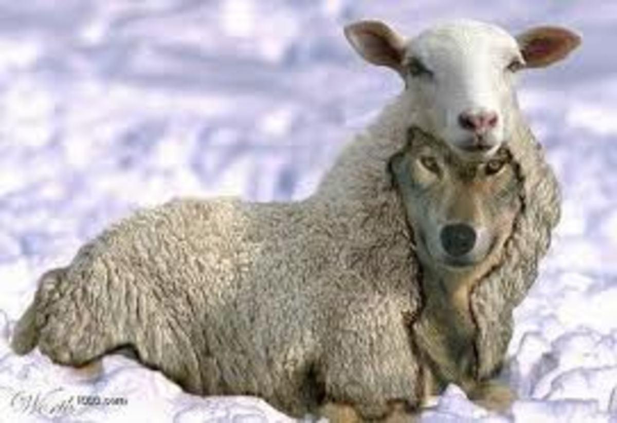 Beware of False Prophets