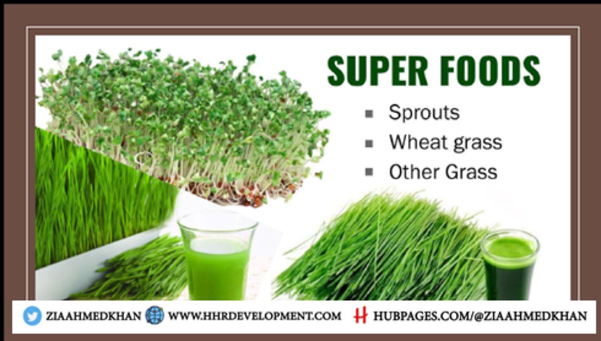 Wheat Grass Super Food