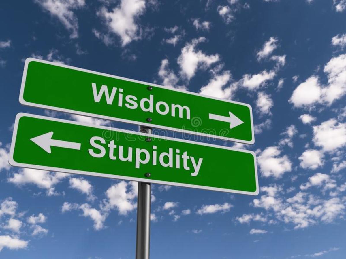 the-war-on-stupidity