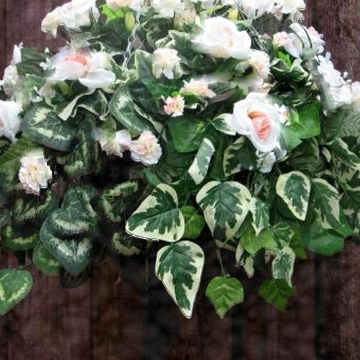 Using a variety of ivy species can make a very creative arrangement for any hanging basket!