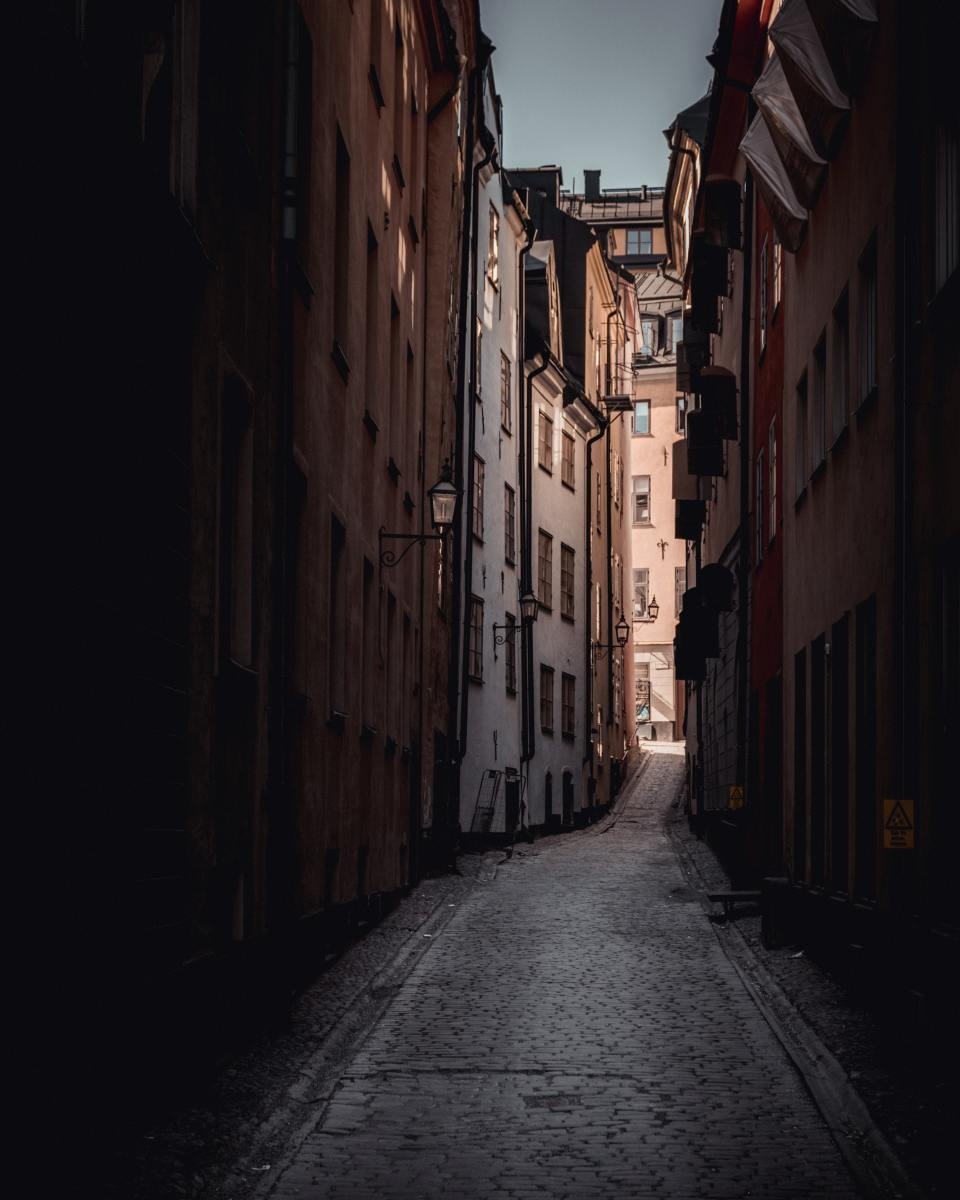 Dark alleys can be frightening places and a lot of unsightly things can be seen, heard, or experienced within its stuffy confines