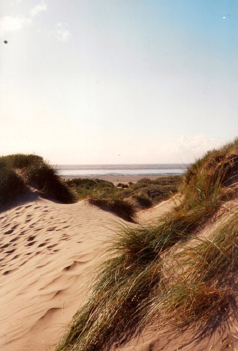 Through the Windswept Dunes to the Sea
