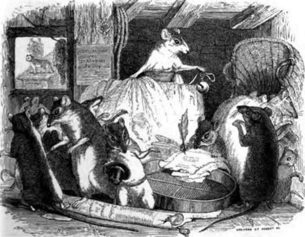 Queen Rat