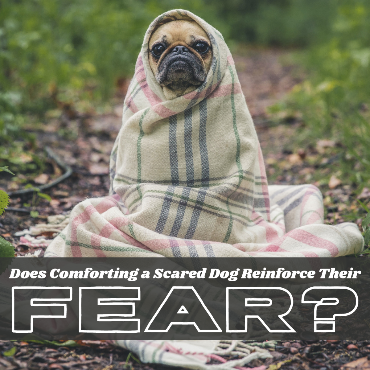 Can emotions like fear be reinforced like behaviors?