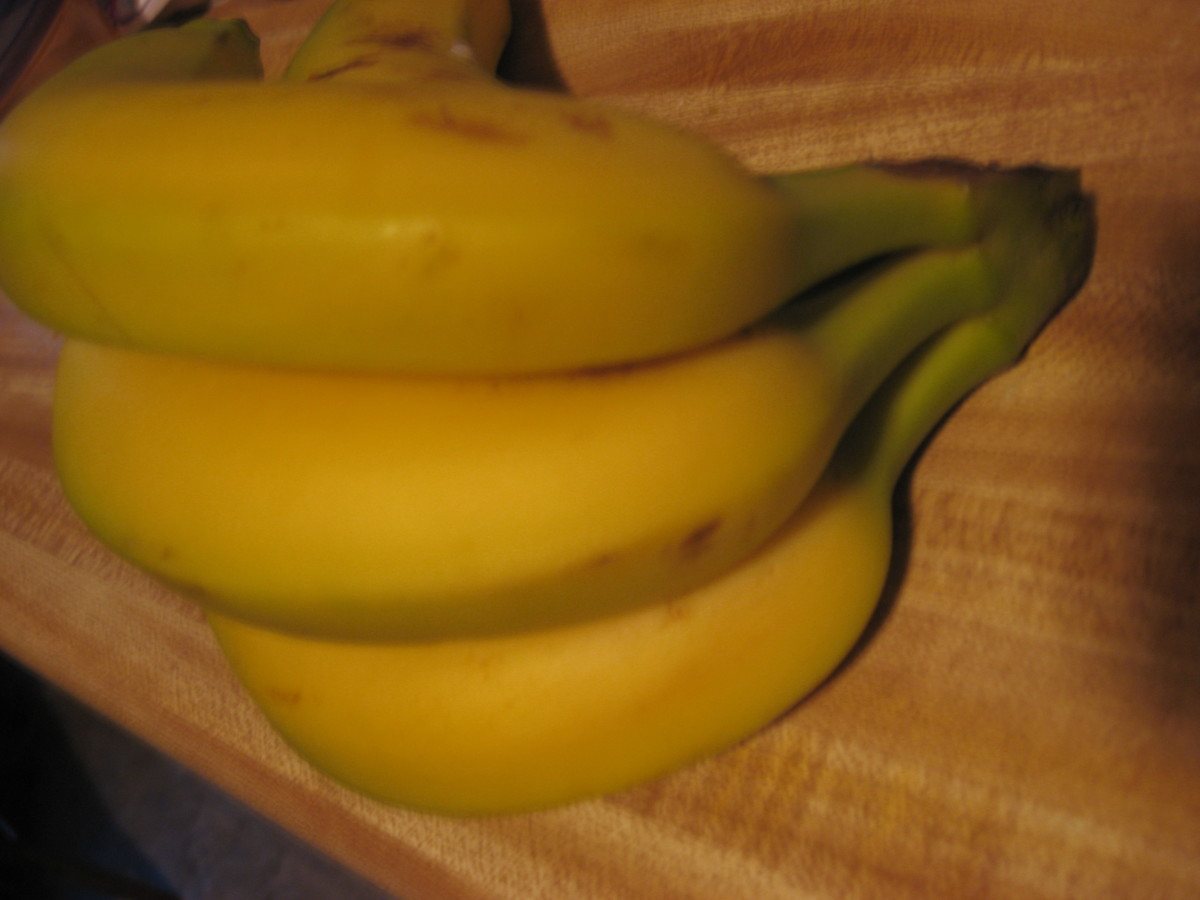 A bunch of bananas, still ripening on the counter