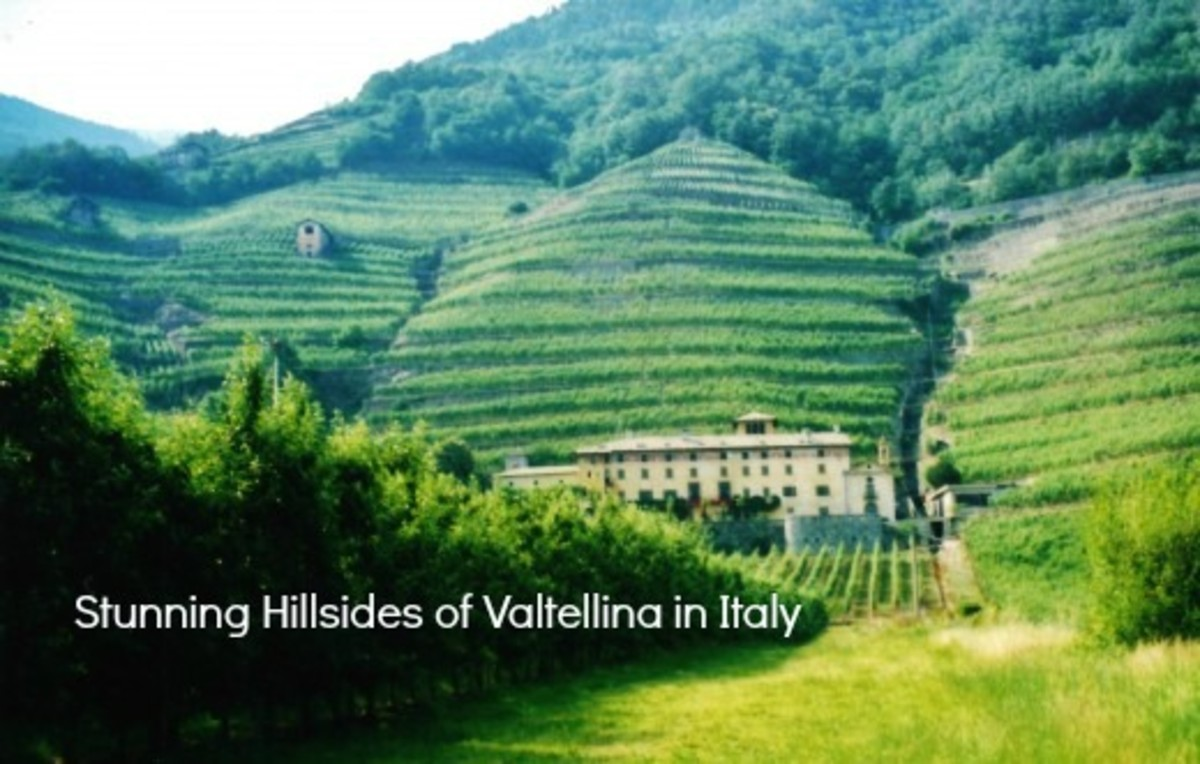 Just look at those terraced hillside vineyards!