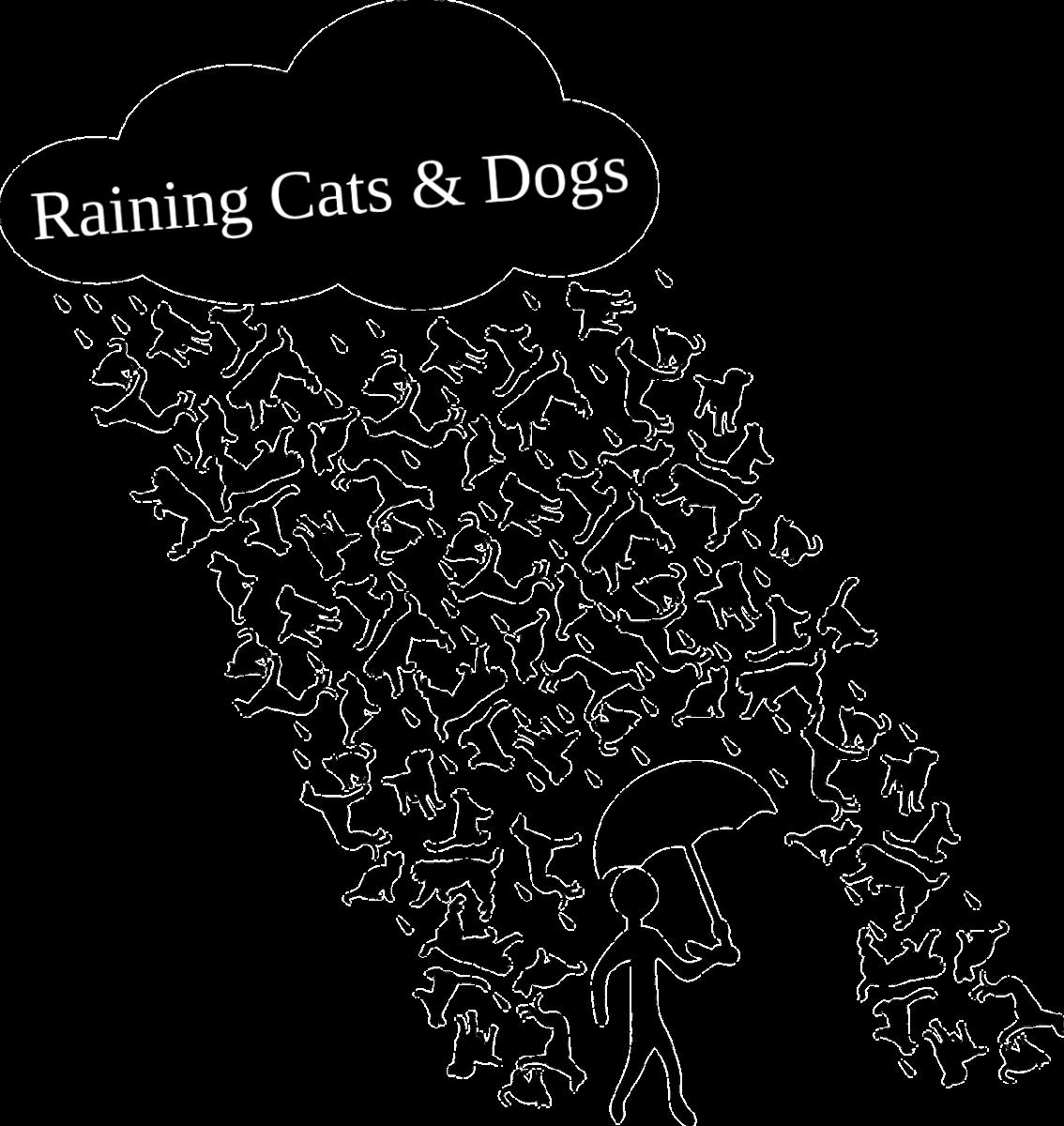 Idiom Example:Raining Cats & Dogs