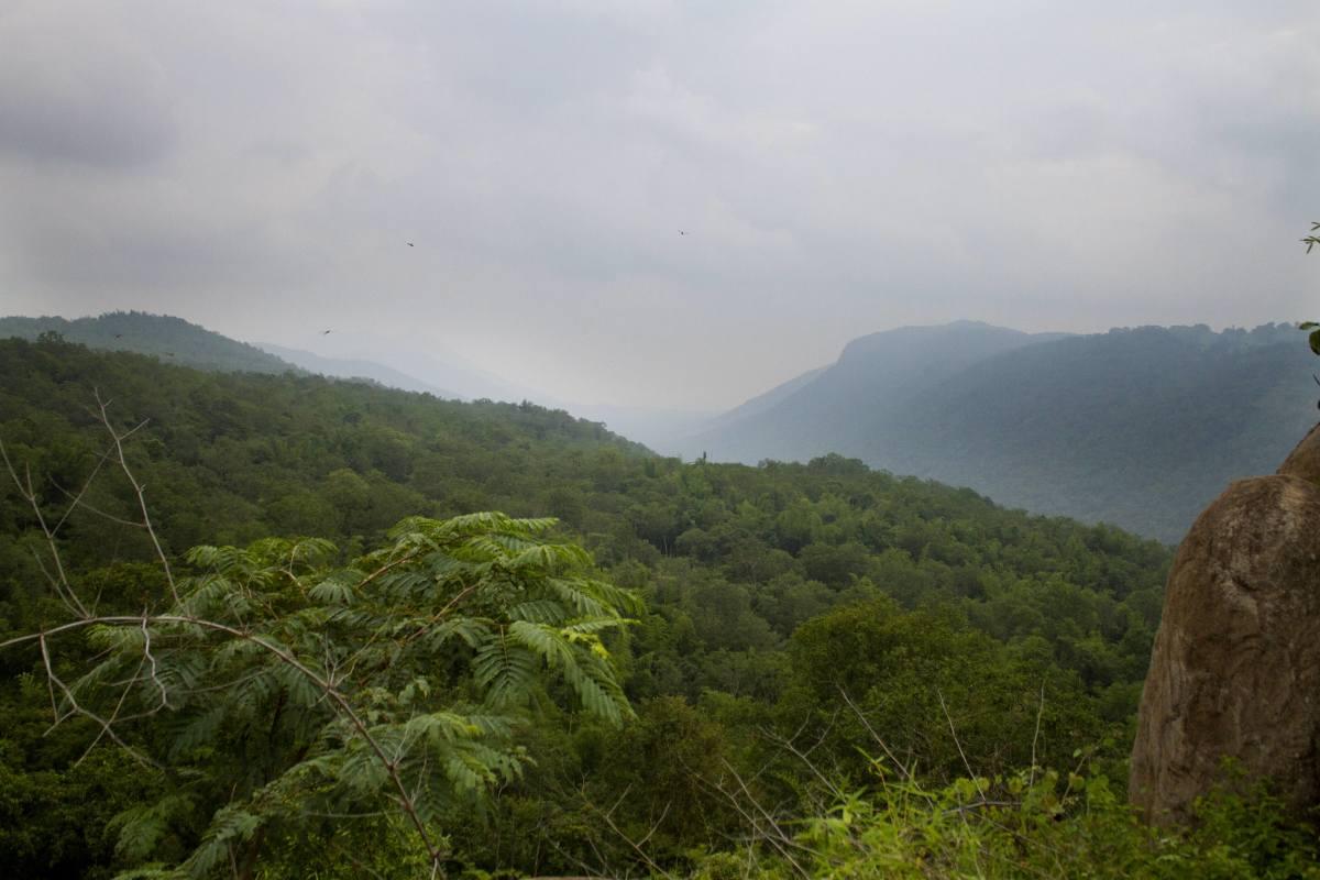 Spider Valley View Point, Melagiri