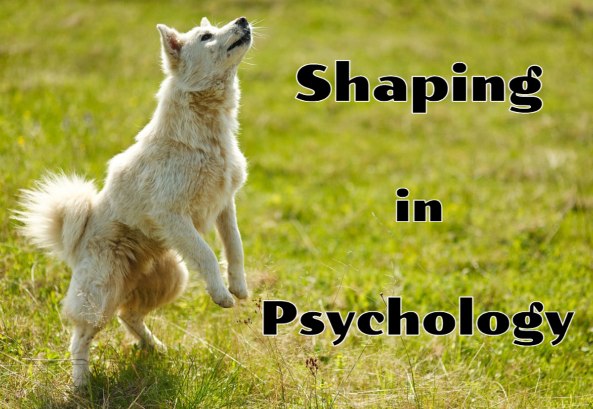 shaping-psychology-behavior-modification-operant-conditioning-aba