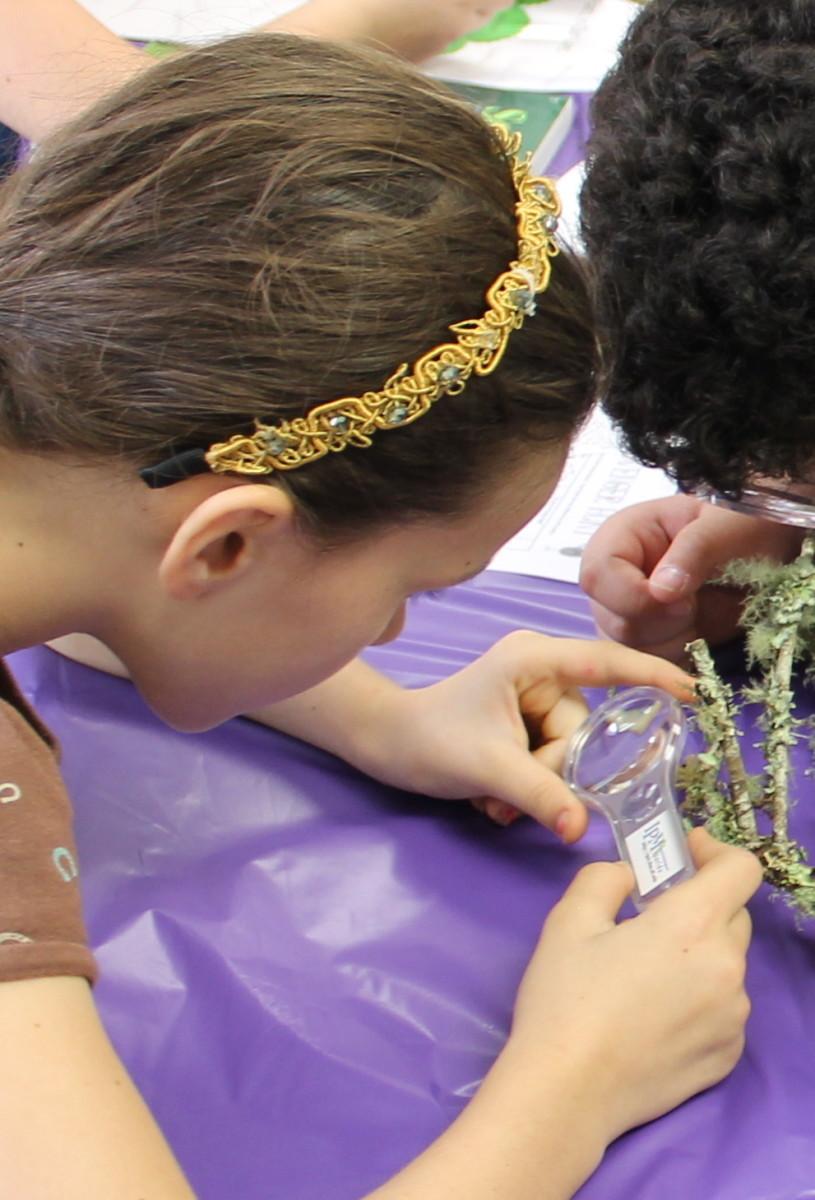 Examining lichen