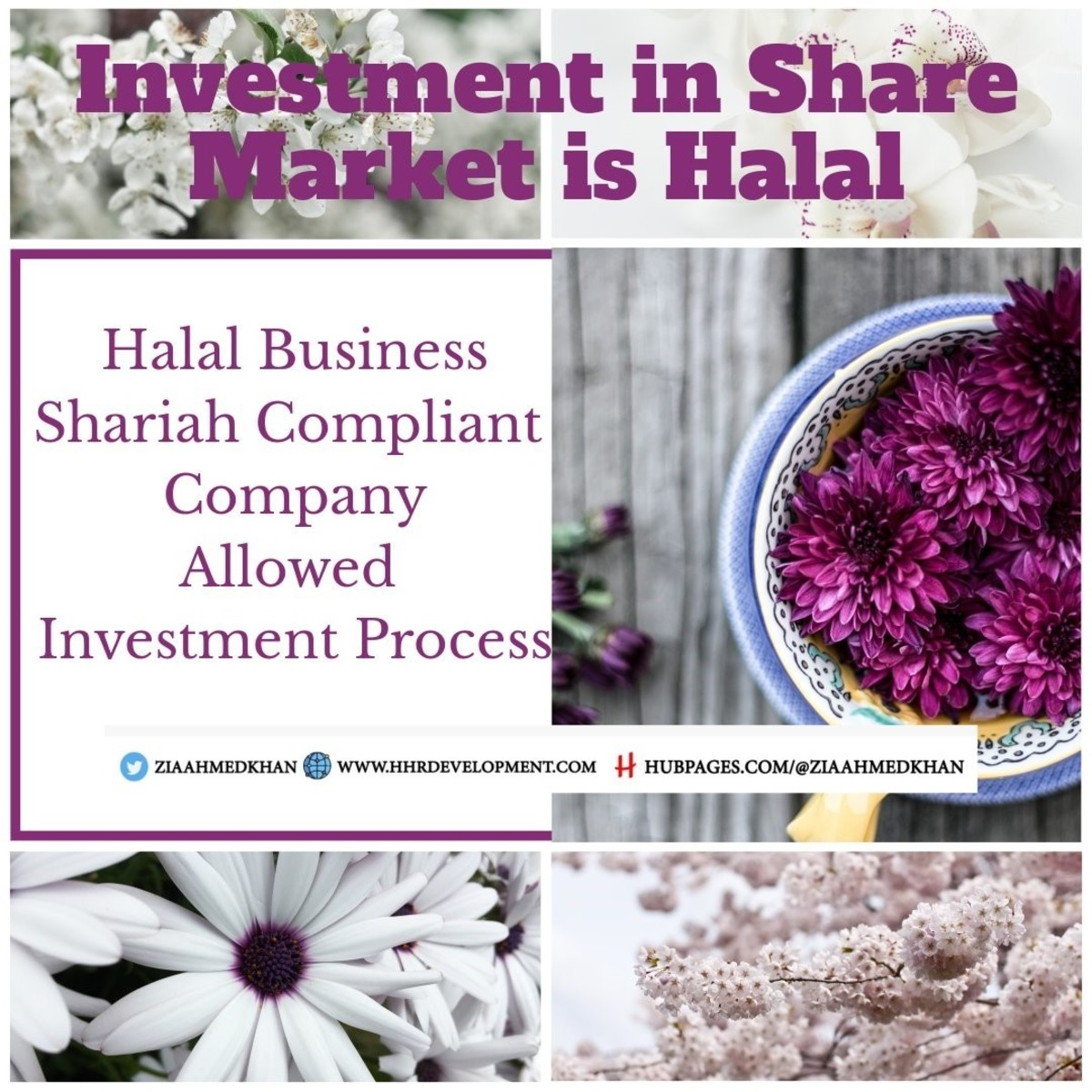 Share Market Investment is Halal
