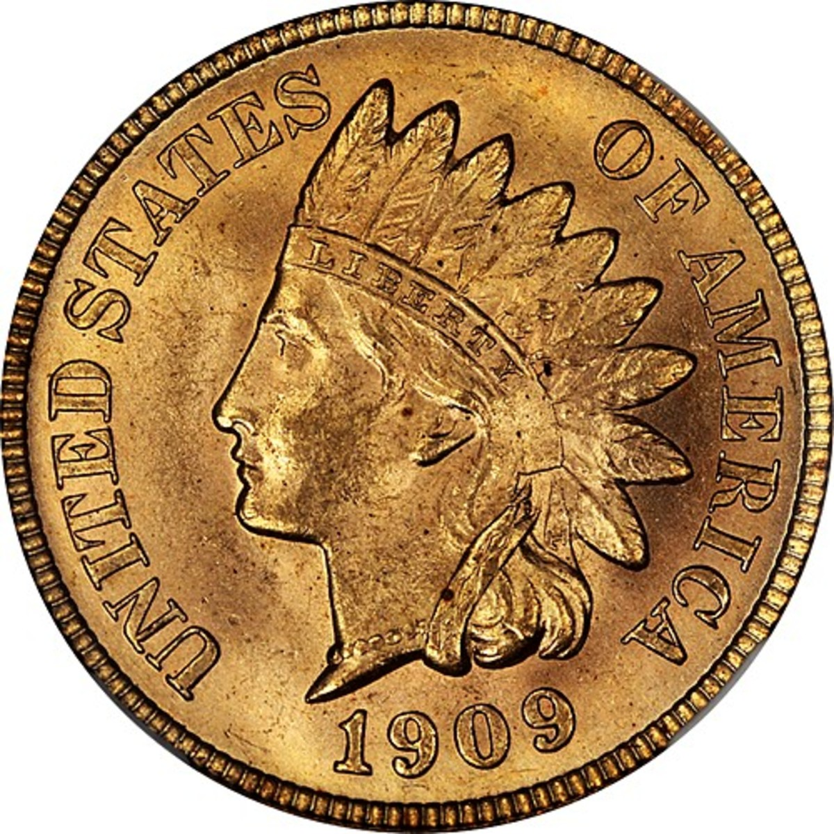 A Beginner's Guide to Starting a Coin Collection